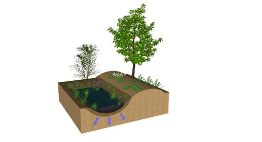 ecological_restoration_workshop