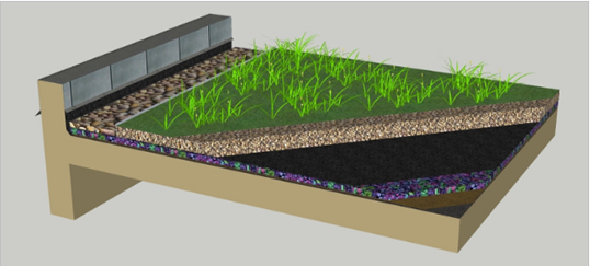 green_roofs_workshop