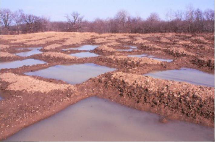 hydrology_restoration