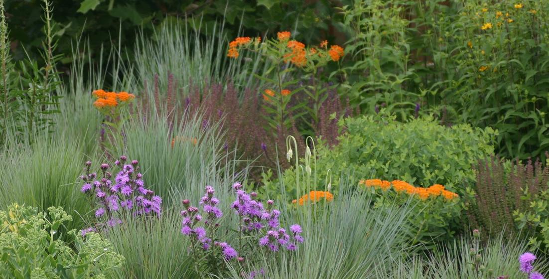 metcalf_garden